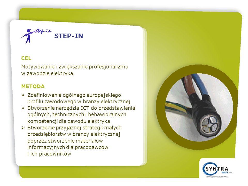 CEL Motywowanie i zwiększanie profesjonalizmu w zawodzie elektryka.