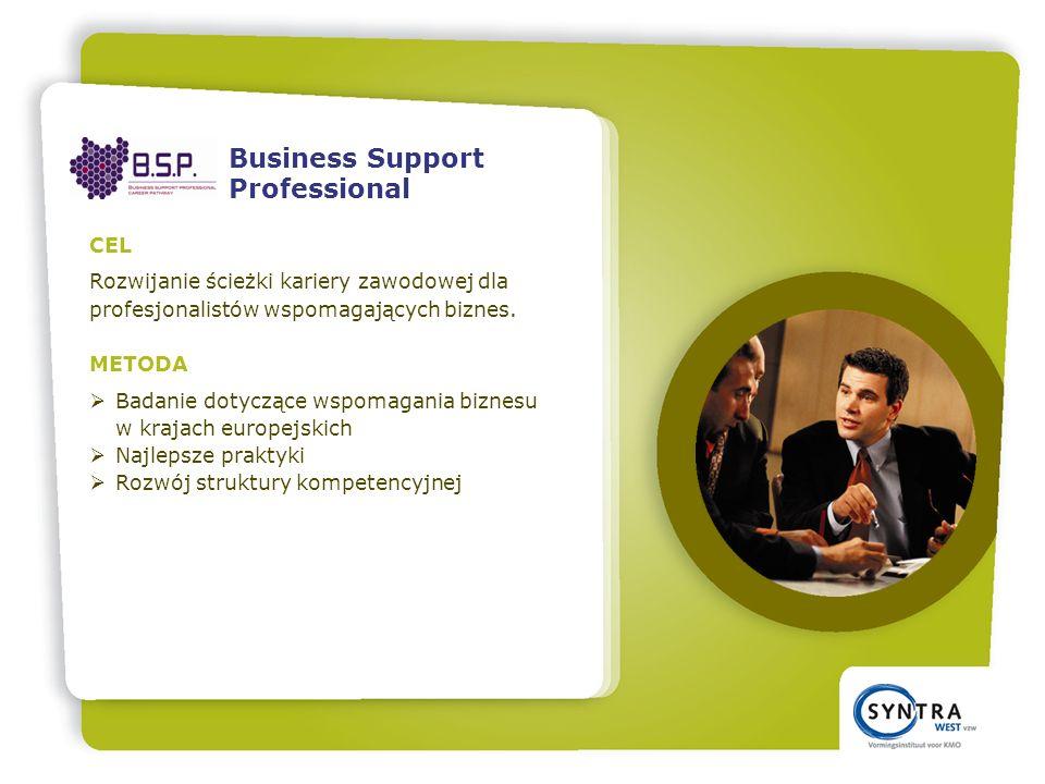 CEL Rozwijanie ścieżki kariery zawodowej dla profesjonalistów wspomagających biznes.