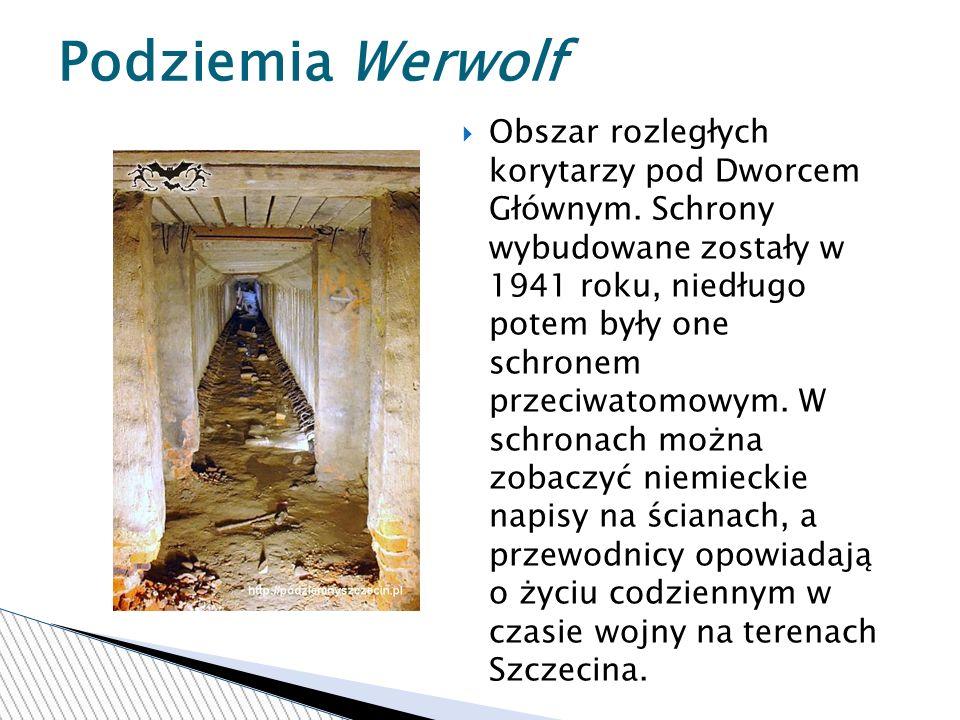 Obszar rozległych korytarzy pod Dworcem Głównym.