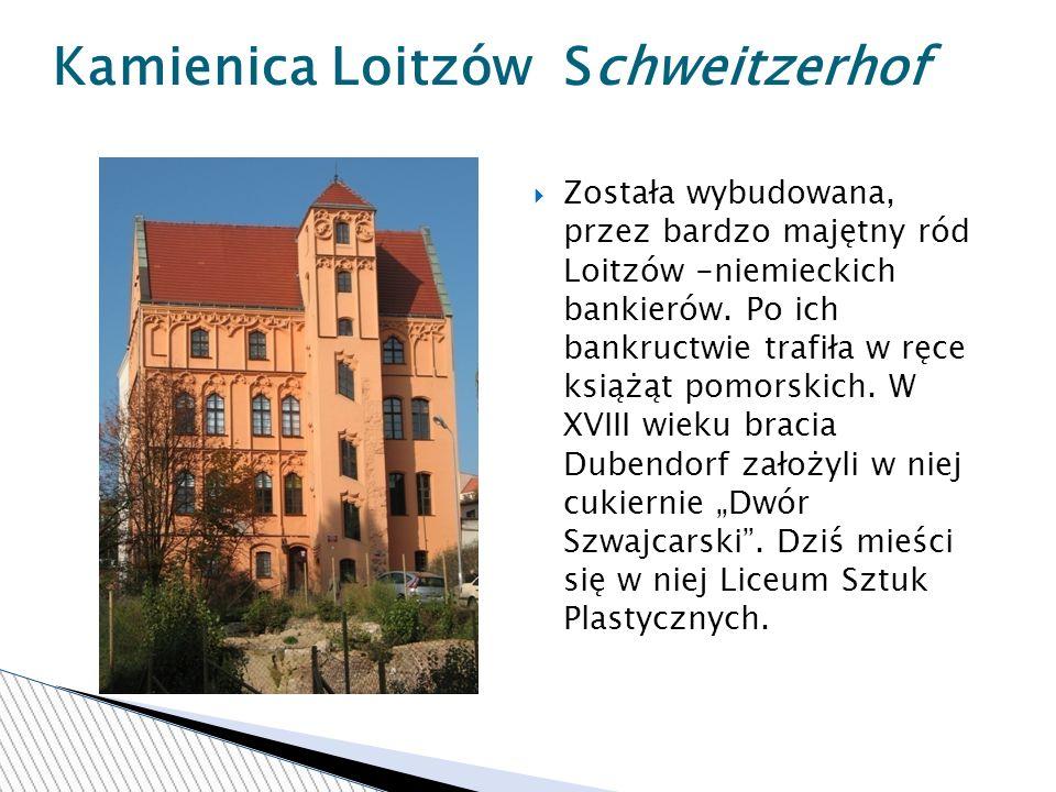 Została wybudowana, przez bardzo majętny ród Loitzów -niemieckich bankierów.