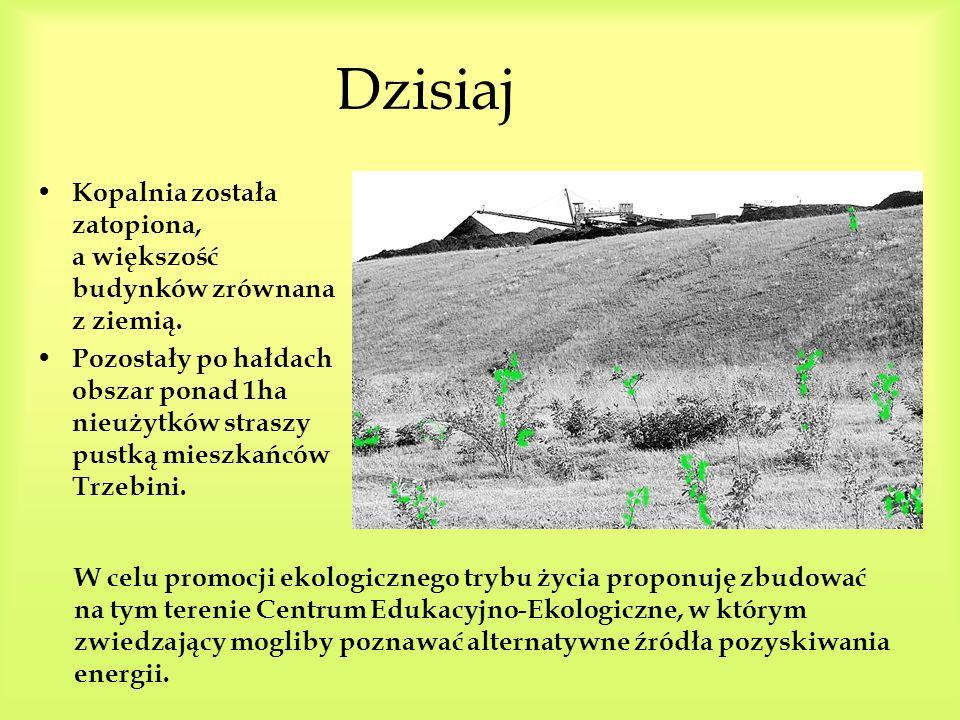 Wczoraj N a terenie gminy Trzebinia znajdowała się Kopalnia Węgla Kamiennego Siersza, na której w latach jej rozkwitu, pracowało 6000 pracowników. B y