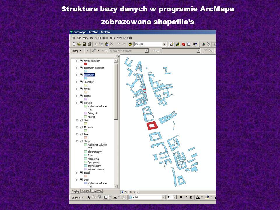 Struktura bazy danych w programie ArcMapa zobrazowana shapefiles