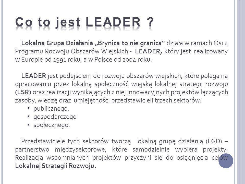 Lokalna Grupa Działania Brynica to nie granica działa w ramach Osi 4 Programu Rozwoju Obszarów Wiejskich - LEADER, który jest realizowany w Europie od 1991 roku, a w Polsce od 2004 roku.