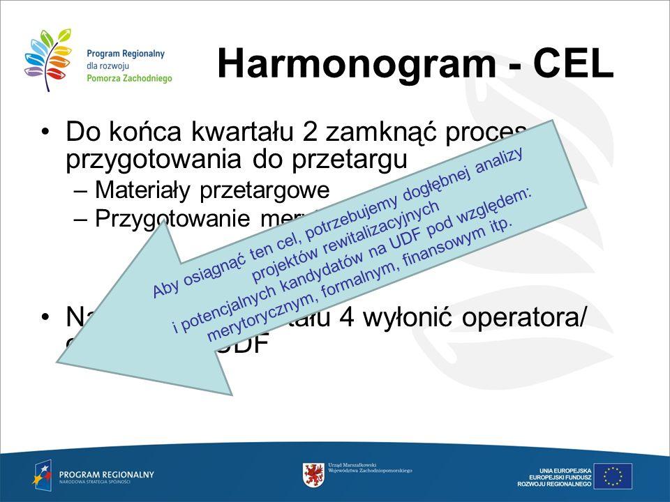Harmonogram - CEL Do końca kwartału 2 zamknąć proces przygotowania do przetargu –Materiały przetargowe –Przygotowanie merytoryczne UDF Na początku kwa