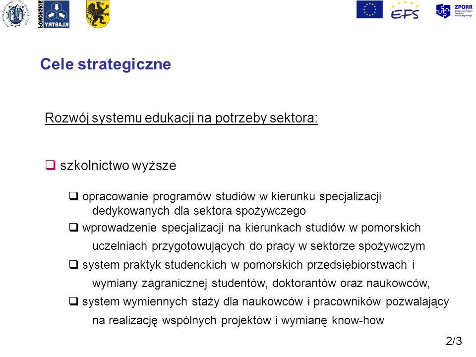 Cele strategiczne Rozwój systemu edukacji na potrzeby sektora: szkolnictwo wyższe opracowanie programów studiów w kierunku specjalizacji dedykowanych