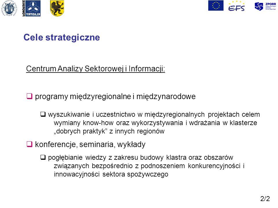 Cele strategiczne Centrum Analizy Sektorowej i Informacji: programy międzyregionalne i międzynarodowe wyszukiwanie i uczestnictwo w międzyregionalnych