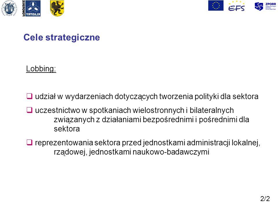 Cele strategiczne Lobbing: udział w wydarzeniach dotyczących tworzenia polityki dla sektora uczestnictwo w spotkaniach wielostronnych i bilateralnych