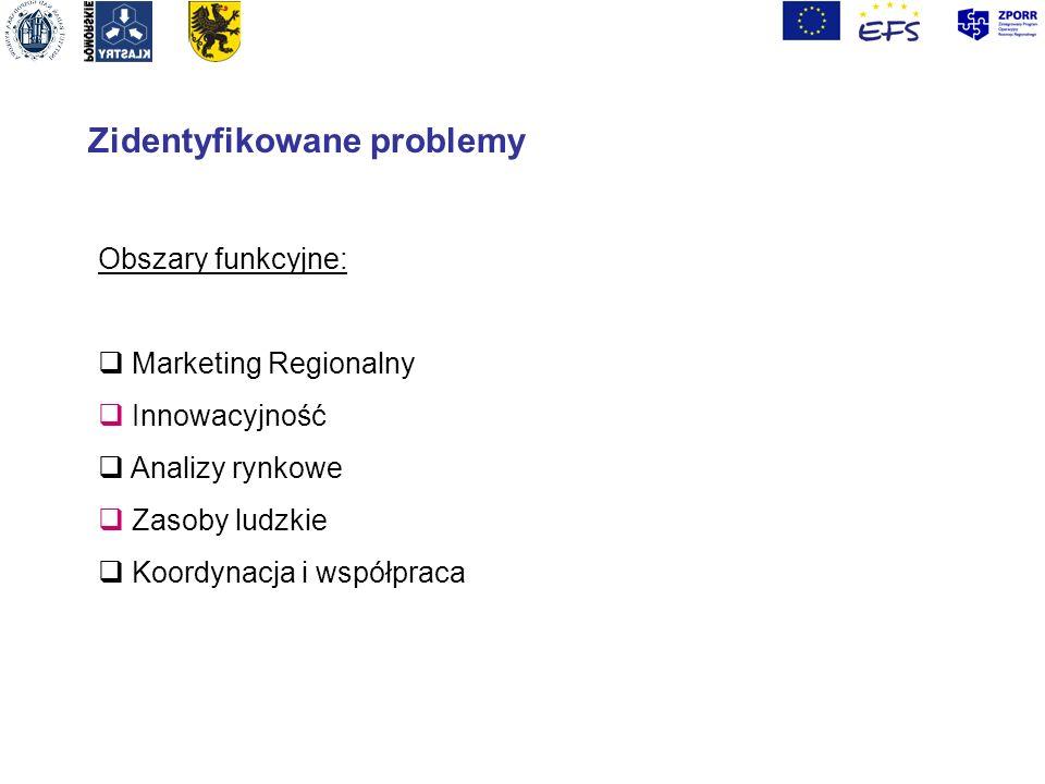 Zidentyfikowane problemy Obszary funkcyjne: Marketing Regionalny Innowacyjność Analizy rynkowe Zasoby ludzkie Koordynacja i współpraca