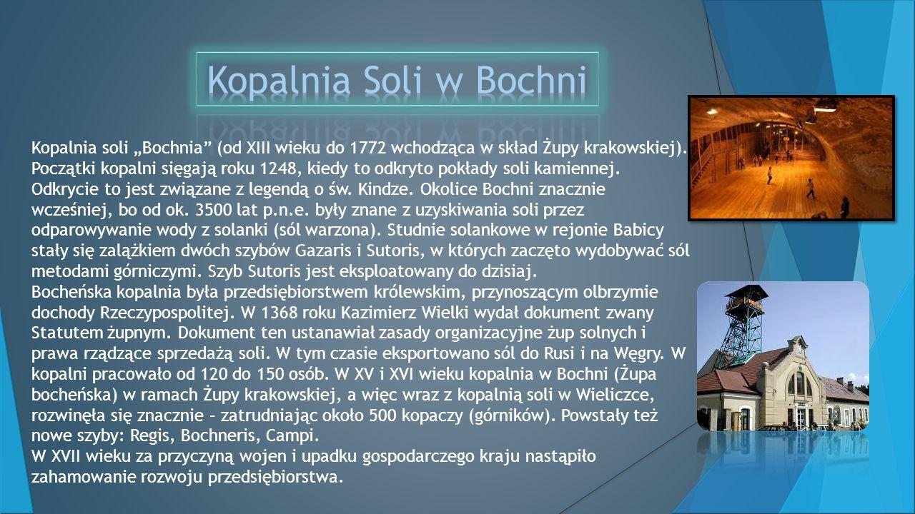 Kopalnia soli Bochnia (od XIII wieku do 1772 wchodząca w skład Żupy krakowskiej).