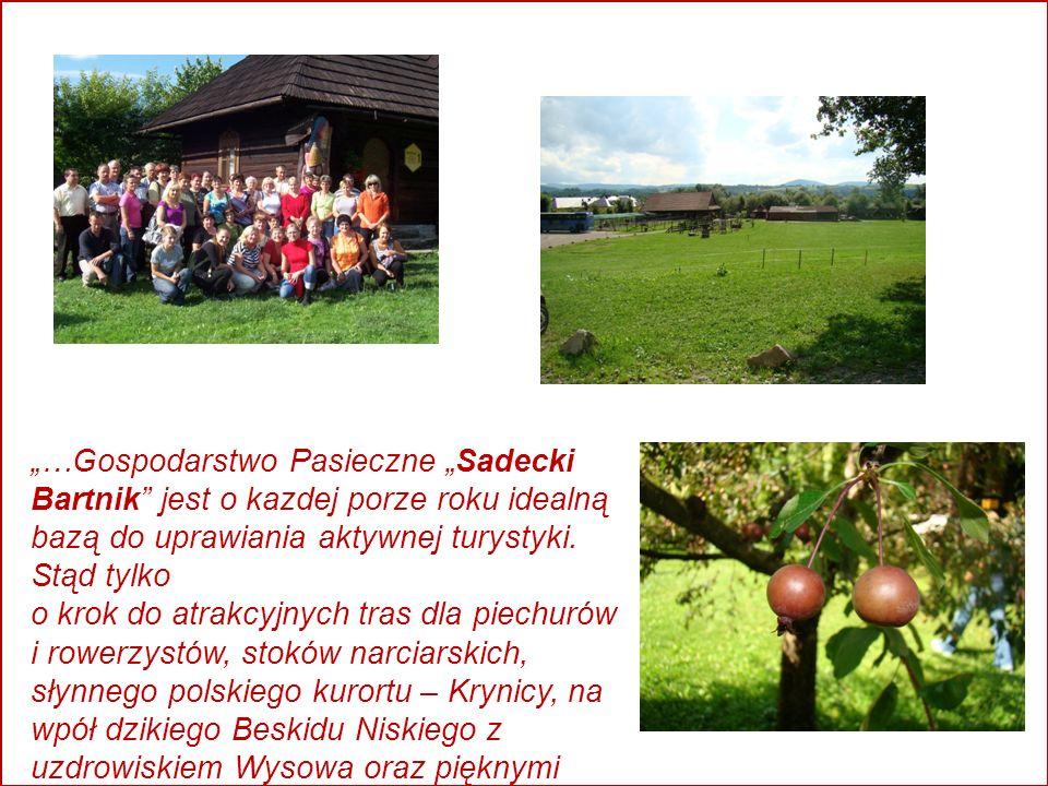 …Gospodarstwo Pasieczne Sadecki Bartnik jest o kazdej porze roku idealną bazą do uprawiania aktywnej turystyki.