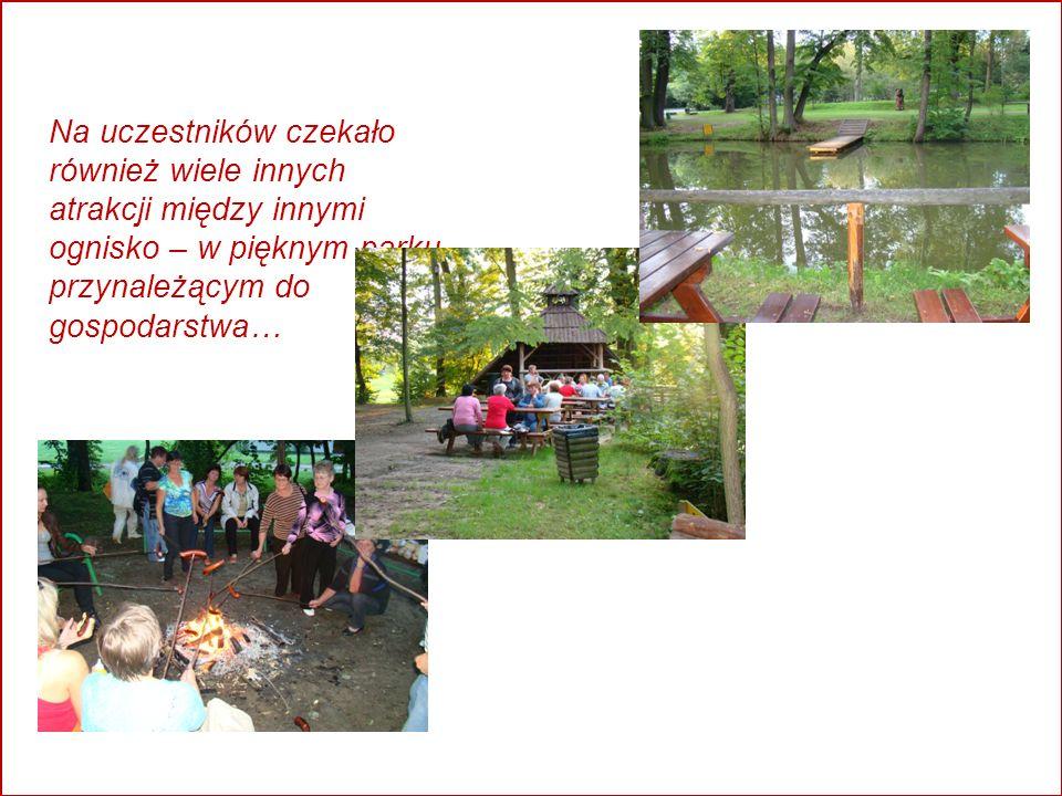 Na uczestników czekało również wiele innych atrakcji między innymi ognisko – w pięknym parku przynależącym do gospodarstwa…