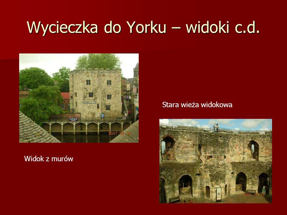 Wycieczka do Yorku – widoki c.d. Widok z murów Stara wieża widokowa