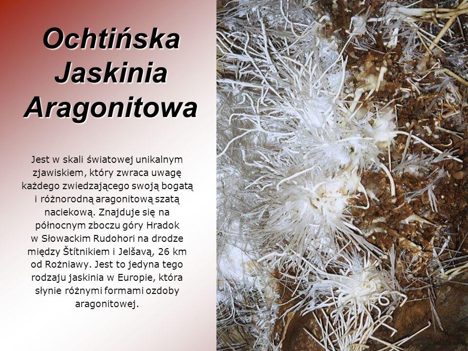 Ochtińska Jaskinia Aragonitowa Jest w skali światowej unikalnym zjawiskiem, który zwraca uwagę każdego zwiedzającego swoją bogatą i różnorodną aragoni