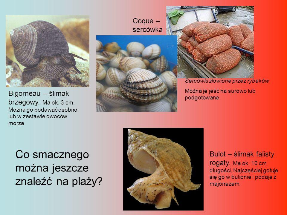 Co smacznego można jeszcze znaleźć na plaży? Bigorneau – ślimak brzegowy. Ma ok. 3 cm. Można go podawać osobno lub w zestawie owoców morza Coque – ser
