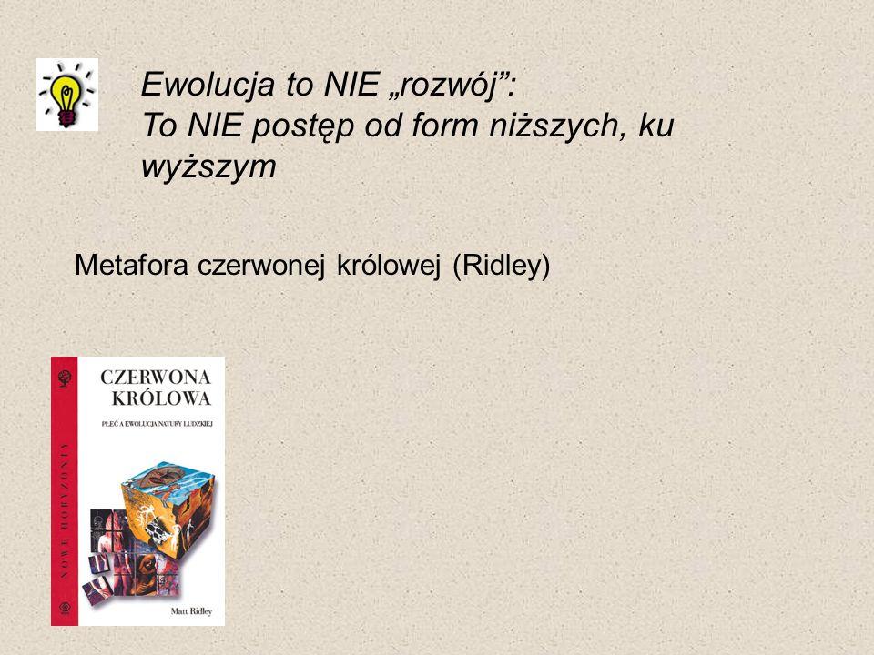 07-03-23 Ewolucja to NIE rozwój: To NIE postęp od form niższych, ku wyższym Metafora czerwonej królowej (Ridley)
