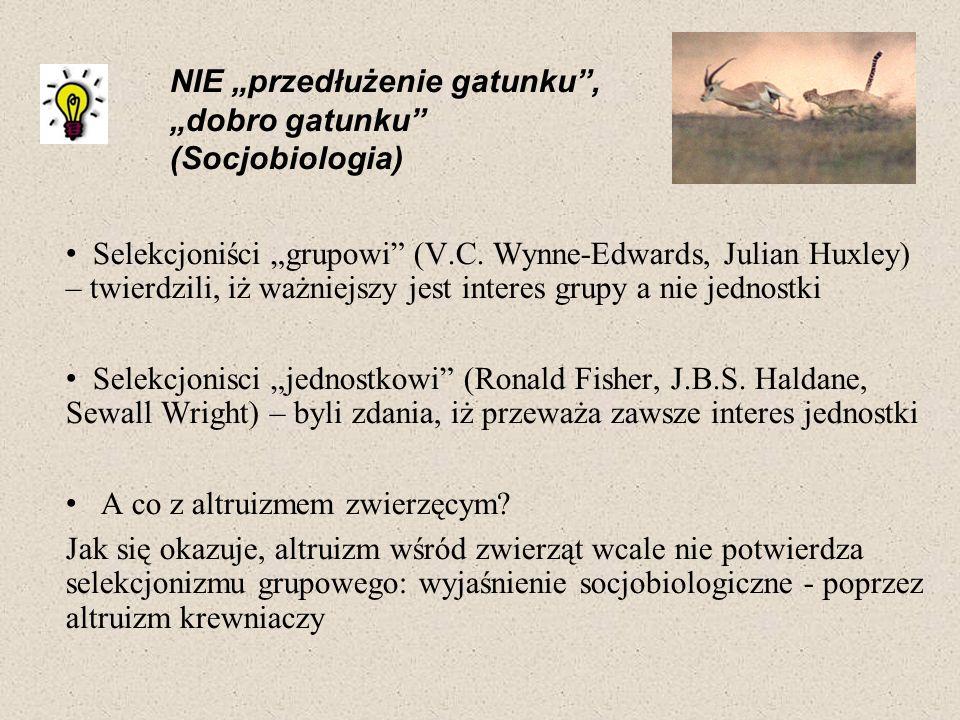 Selekcjoniści grupowi (V.C. Wynne-Edwards, Julian Huxley) – twierdzili, iż ważniejszy jest interes grupy a nie jednostki Selekcjonisci jednostkowi (Ro