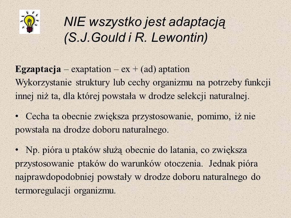 NIE wszystko jest adaptacją (S.J.Gould i R. Lewontin) Egzaptacja – exaptation – ex + (ad) aptation Wykorzystanie struktury lub cechy organizmu na potr