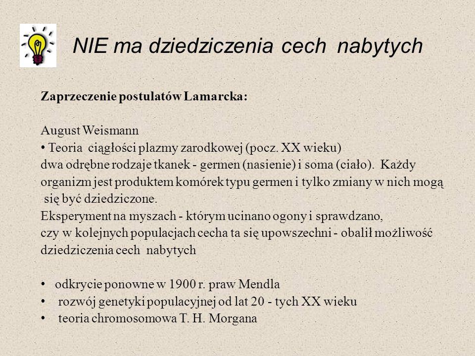 Zaprzeczenie postulatów Lamarcka: August Weismann Teoria ciągłości plazmy zarodkowej (pocz. XX wieku) dwa odrębne rodzaje tkanek - germen (nasienie) i
