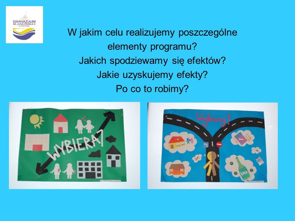 W jakim celu realizujemy poszczególne elementy programu? Jakich spodziewamy się efektów? Jakie uzyskujemy efekty? Po co to robimy?