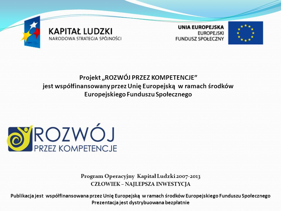 Projekt: Wiedza i umiejętności drogą do sukcesu w przyszłości Całość wydatków – 275 tys.