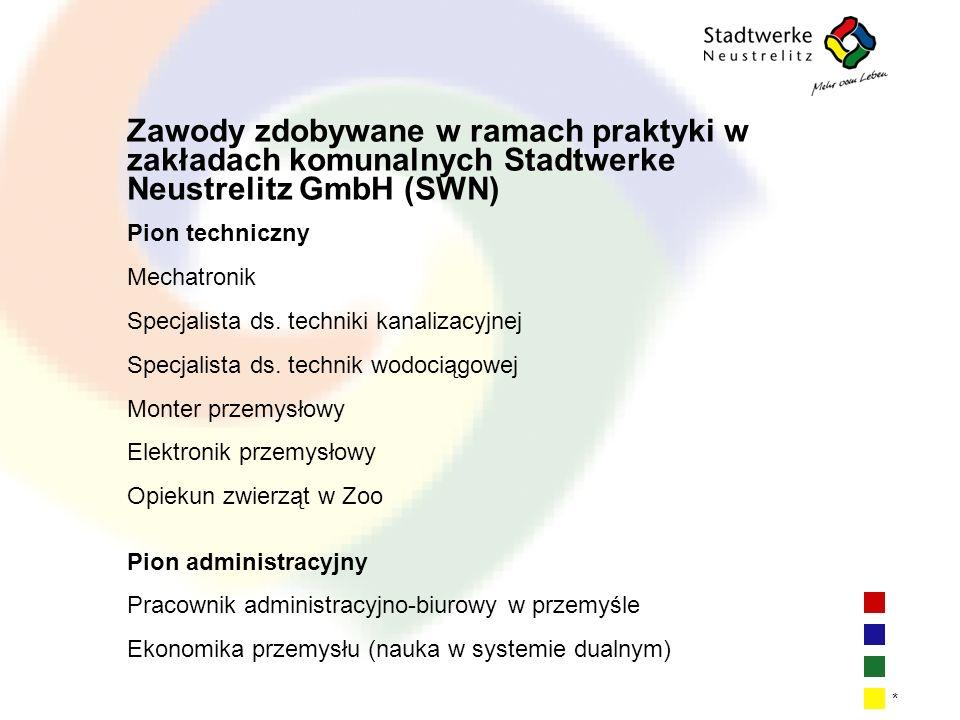| 1| 1| 1| 1 * Zawody zdobywane w ramach praktyki w zakładach komunalnych Stadtwerke Neustrelitz GmbH (SWN) Pion techniczny Mechatronik Specjalista ds.