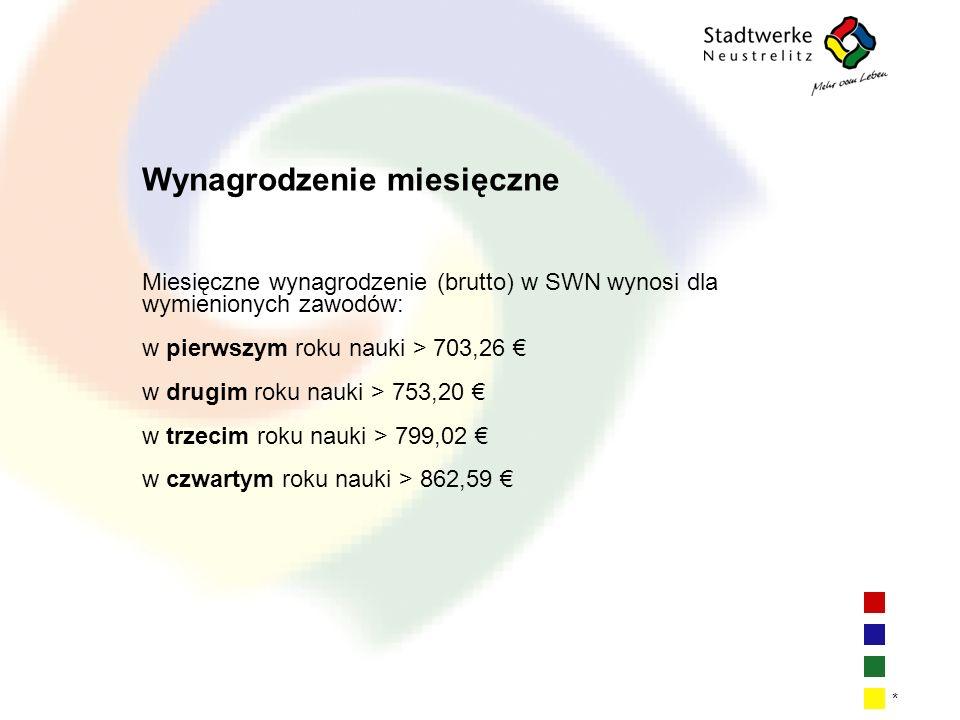 | 2| 2| 2| 2 * Wynagrodzenie miesięczne Miesięczne wynagrodzenie (brutto) w SWN wynosi dla wymienionych zawodów: w pierwszym roku nauki > 703,26 w dru
