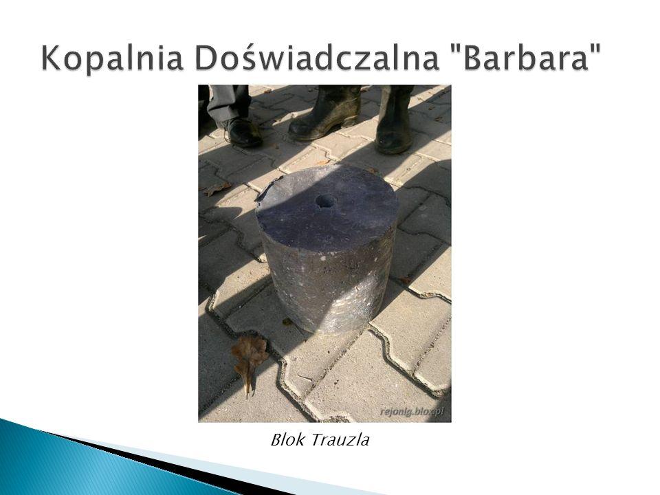 Blok Trauzla