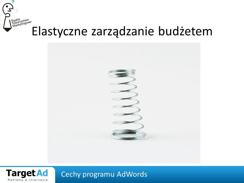 Elastyczne zarządzanie budżetem Cechy programu AdWords