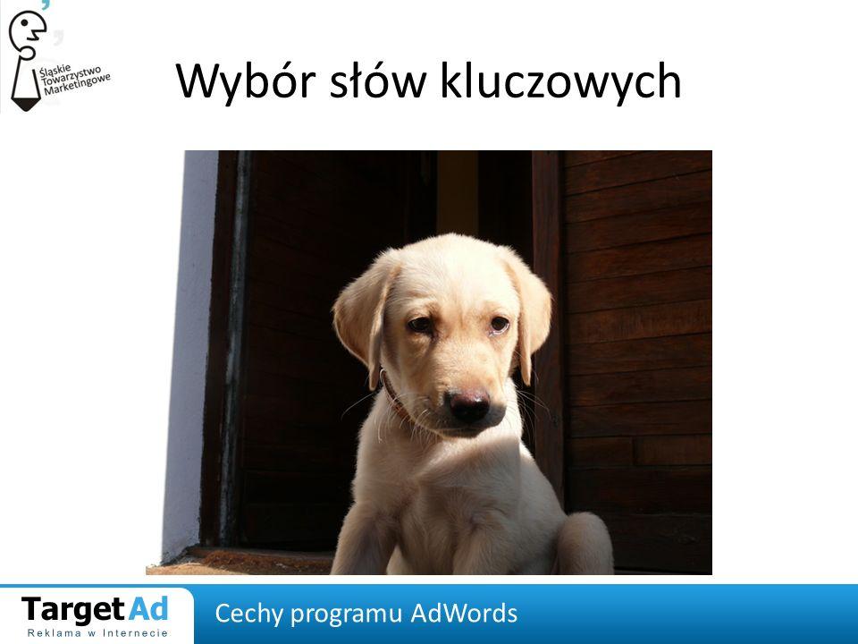 Wybór słów kluczowych Cechy programu AdWords