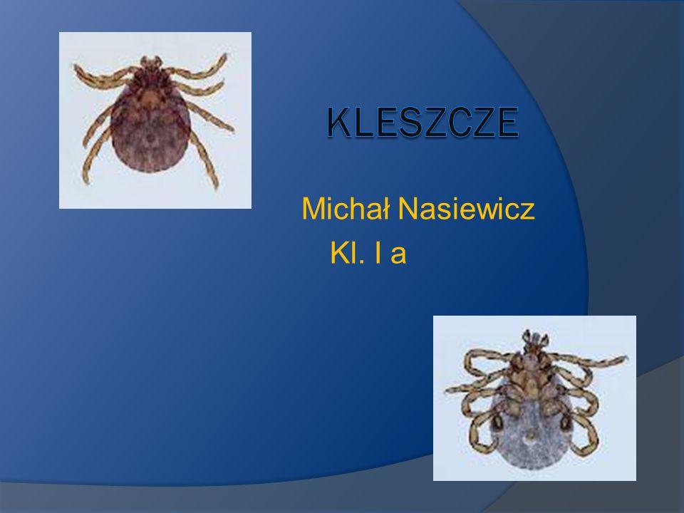 Kleszcze (pajęczaki) Kleszcze – to pajęczaki należące do podgromady roztoczy(Acari), traktowane jako grupa umowna lub jako nadrodzina Ixodoidea albo też jako podrząd Ixodides (Ixodes).