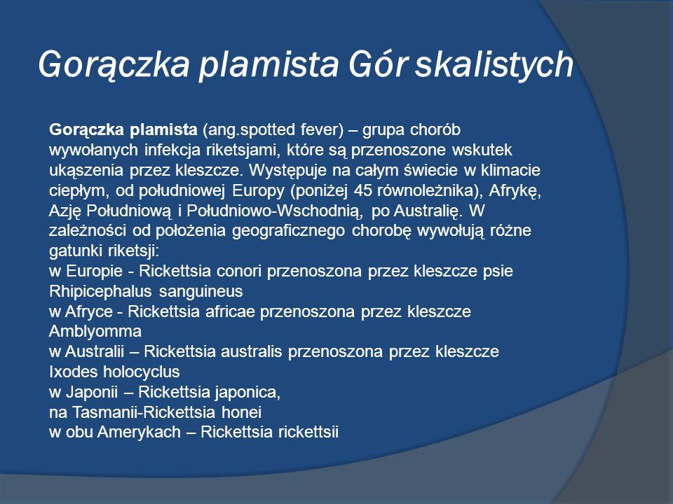 Gorączka plamista Gór skalistych Gorączka plamista (ang.spotted fever) – grupa chorób wywołanych infekcja riketsjami, które są przenoszone wskutek uką