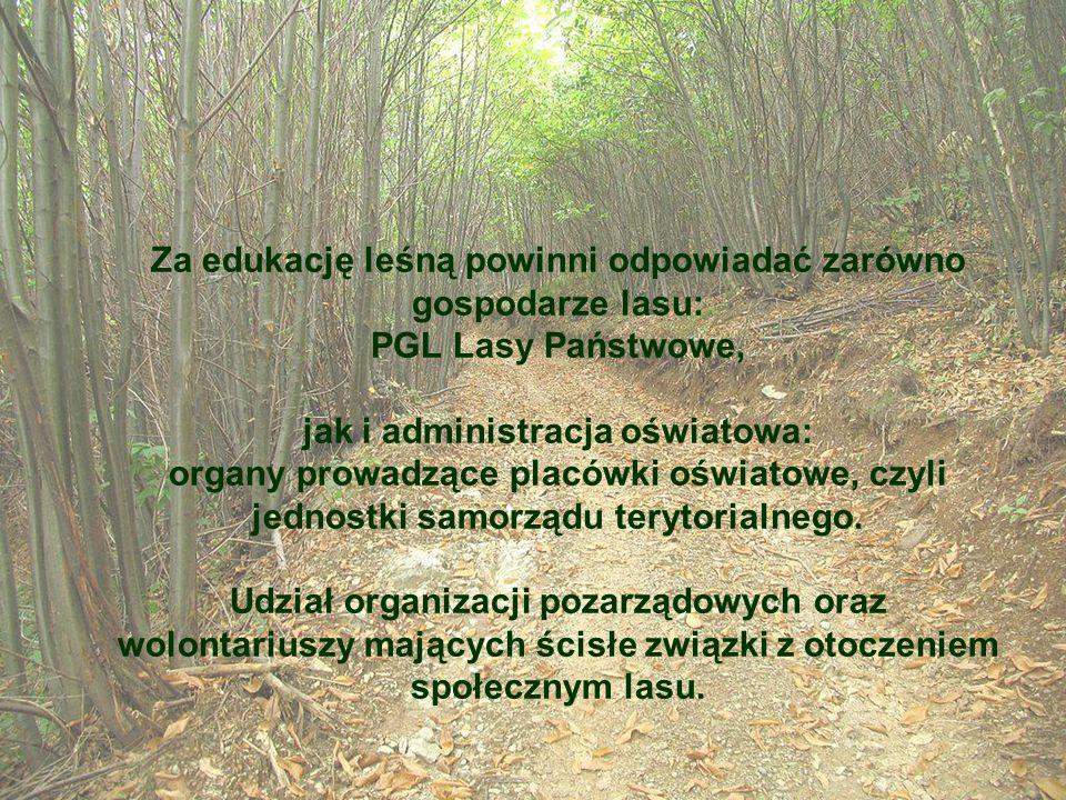 Za edukację leśną powinni odpowiadać zarówno gospodarze lasu: PGL Lasy Państwowe, jak i administracja oświatowa: organy prowadzące placówki oświatowe,