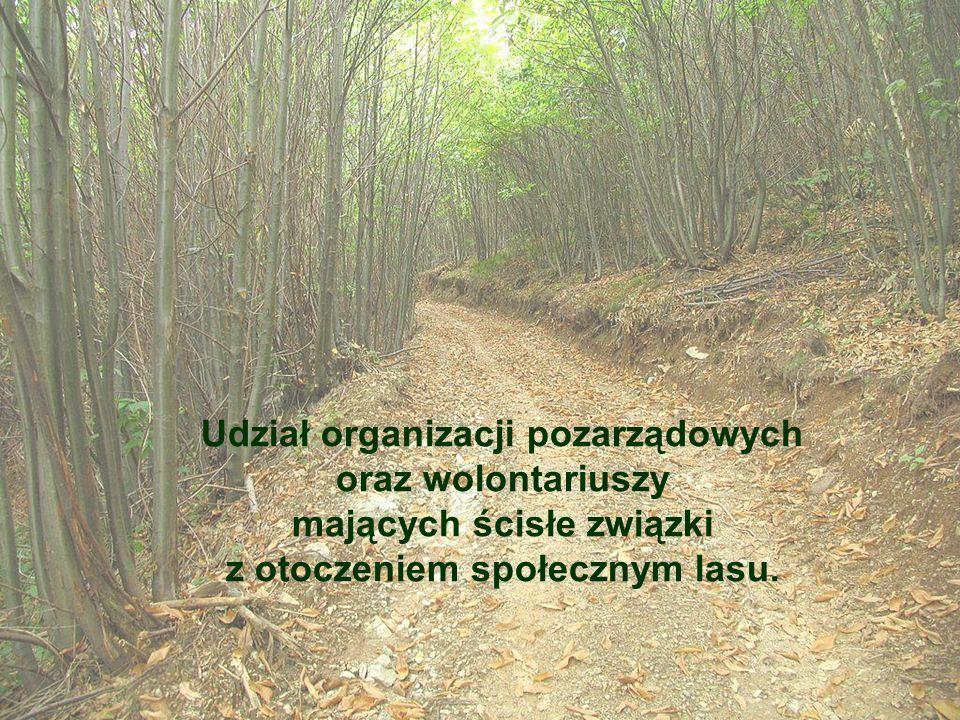 Udział organizacji pozarządowych oraz wolontariuszy mających ścisłe związki z otoczeniem społecznym lasu.