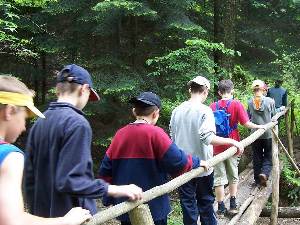 Sposobem na zainteresowanie młodzieży edukacją leśną są szkolne koła Towarzystwa Przyjaciół Lasu. Ich zadania: - spotkania, szkolenia, seminaria, poga