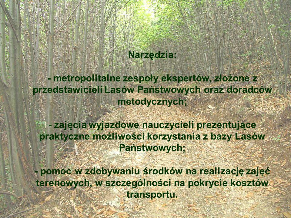 Narzędzia: - metropolitalne zespoły ekspertów, złożone z przedstawicieli Lasów Państwowych oraz doradców metodycznych; - zajęcia wyjazdowe nauczycieli