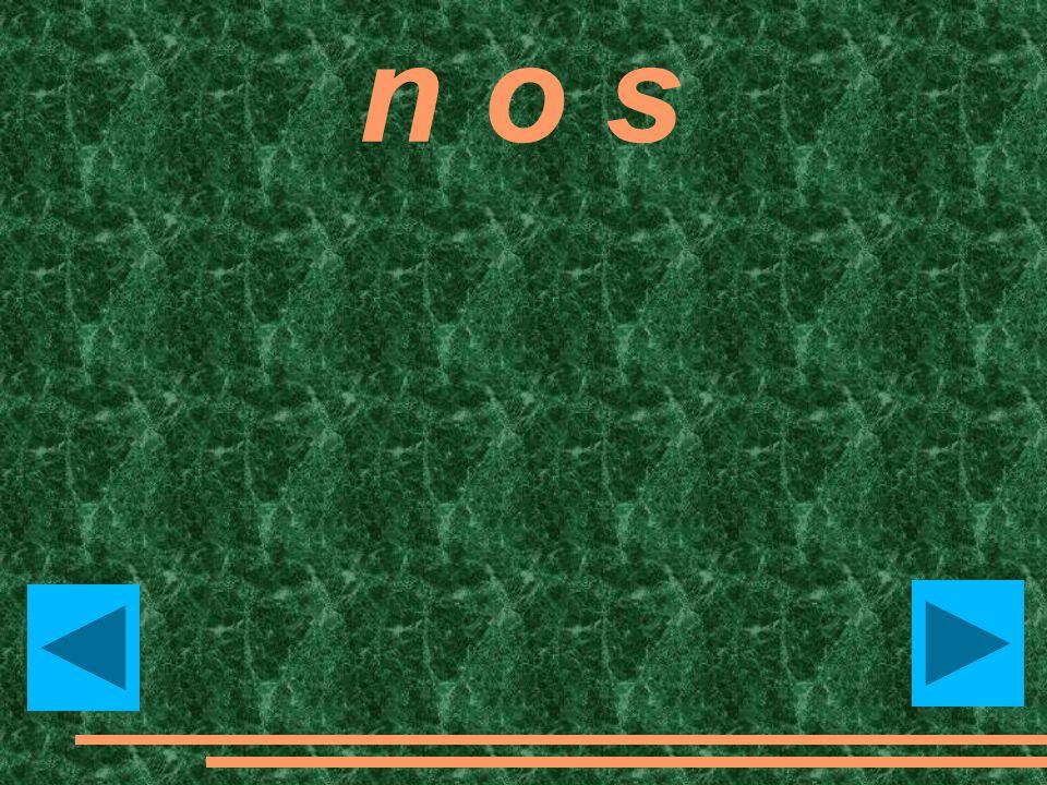 n o s nose