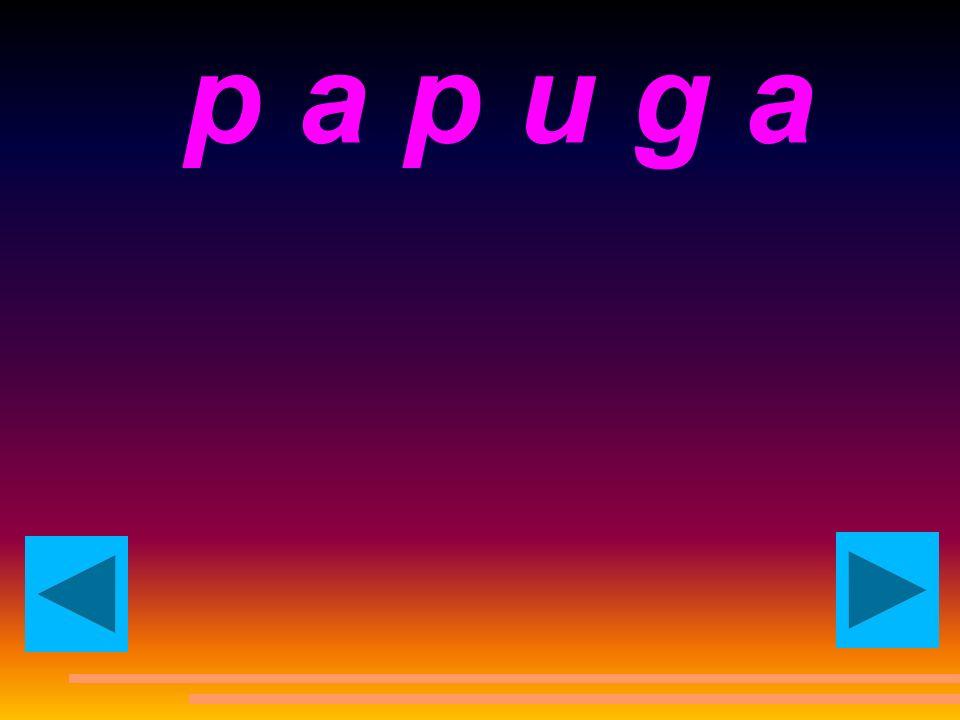 p a p u g a parrot