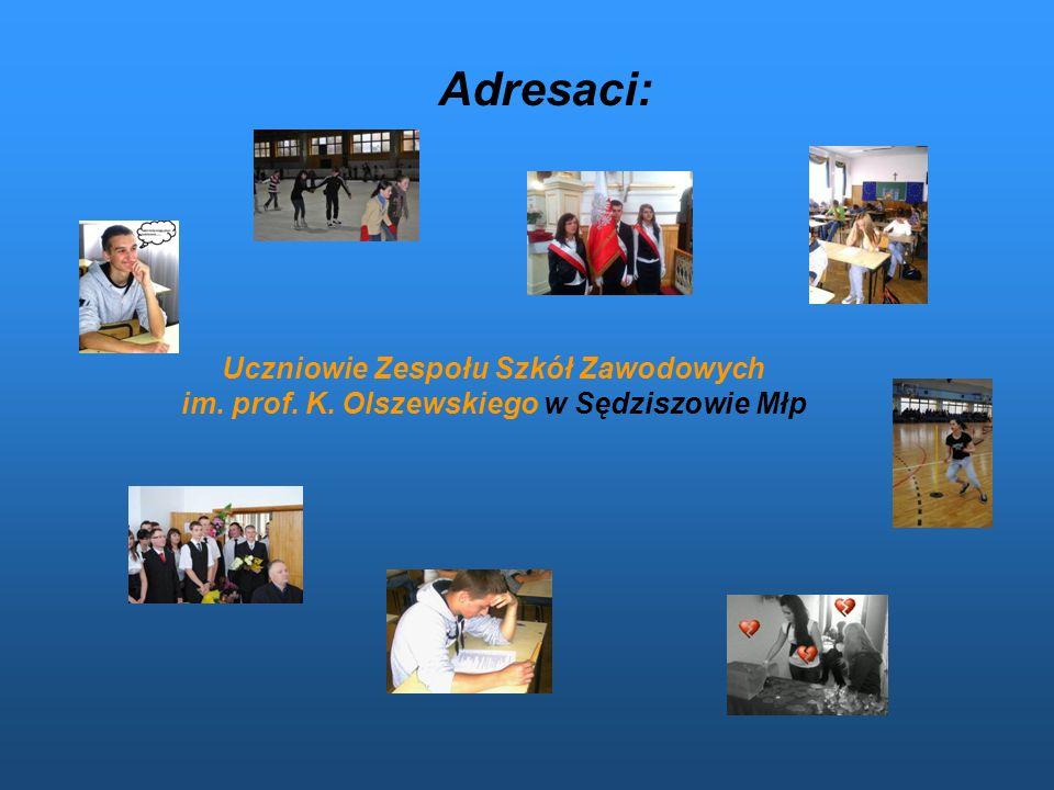 Termin realizacji: 8 listopad 2011 rok