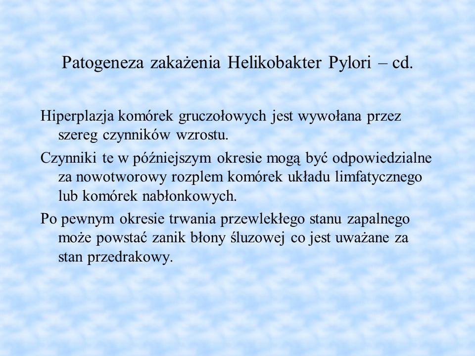 Patogeneza zakażenia Helikobakter Pylori – cd. Hiperplazja komórek gruczołowych jest wywołana przez szereg czynników wzrostu. Czynniki te w późniejszy