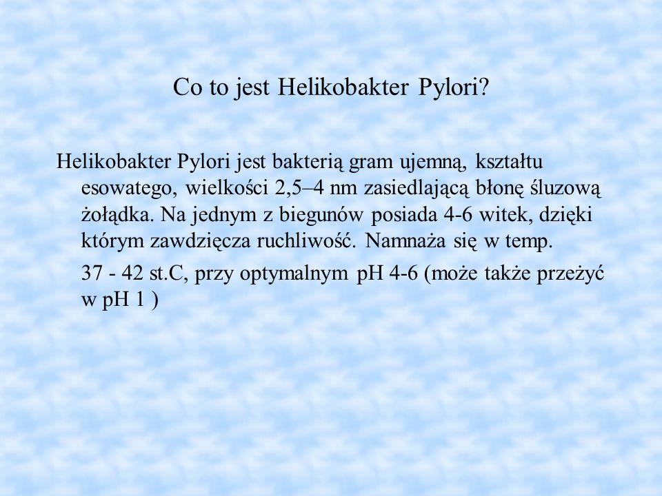 Co to jest Helikobakter Pylori? Helikobakter Pylori jest bakterią gram ujemną, kształtu esowatego, wielkości 2,5–4 nm zasiedlającą błonę śluzową żołąd