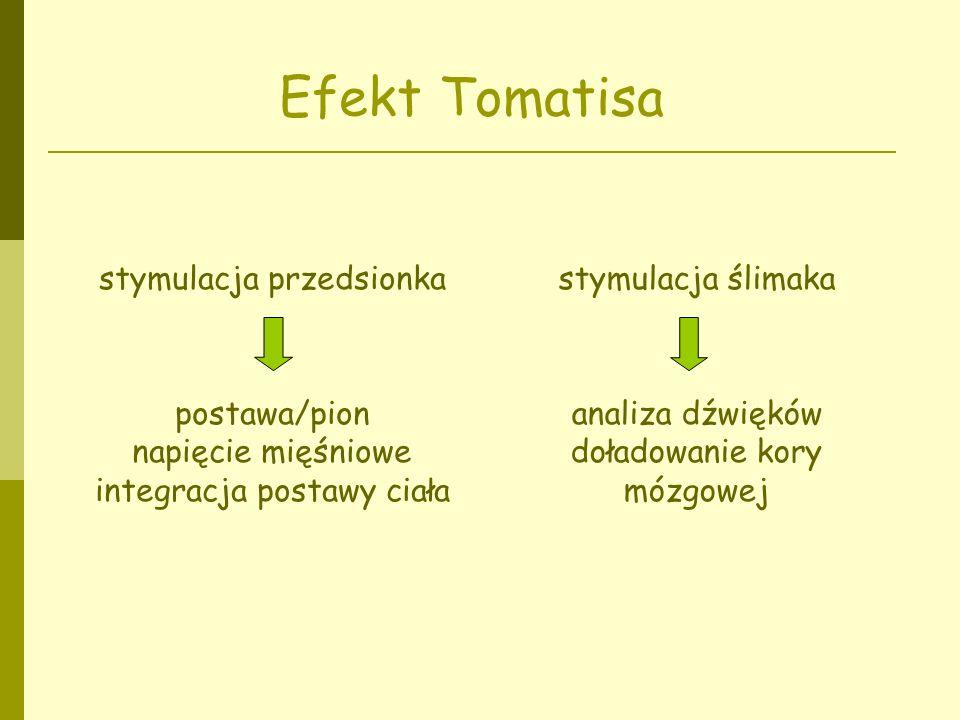 Efekt Tomatisa stymulacja przedsionka postawa/pion napięcie mięśniowe integracja postawy ciała stymulacja ślimaka analiza dźwięków doładowanie kory mó