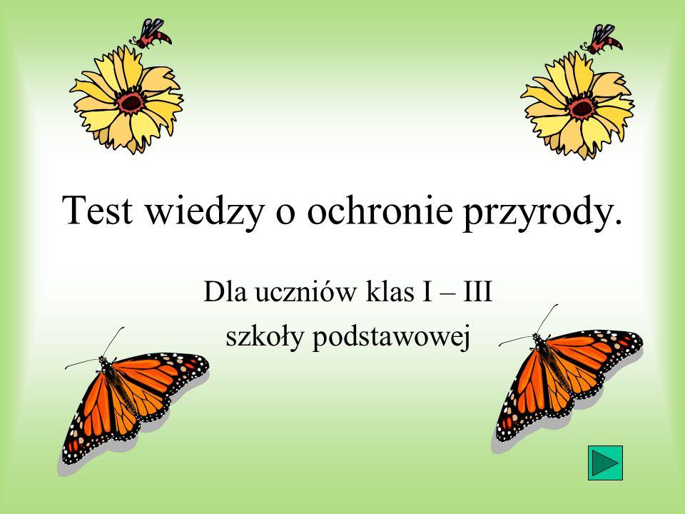 Pytanie 7 Zużyty Sprzęt Elektryczny i Elektroniczny Zespół Szkół Elektrycznych i Elektronicznych Związek Elektryków i Elektroników.