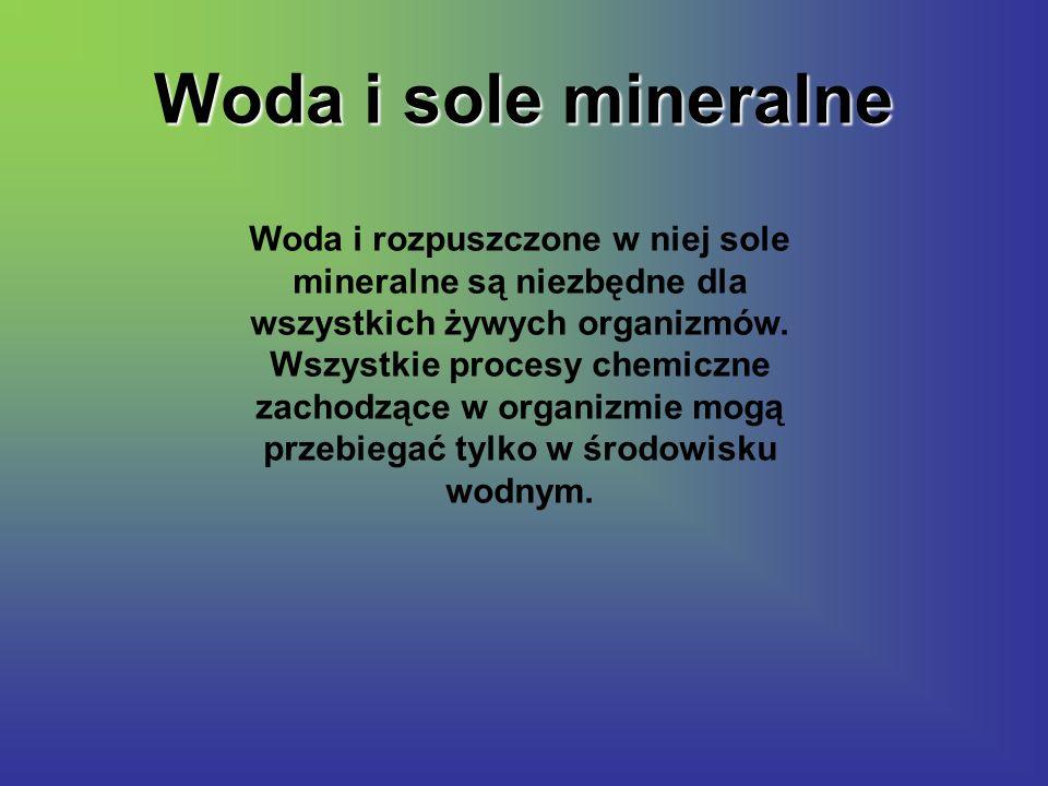 Woda i sole mineralne Woda i rozpuszczone w niej sole mineralne są niezbędne dla wszystkich żywych organizmów. Wszystkie procesy chemiczne zachodzące