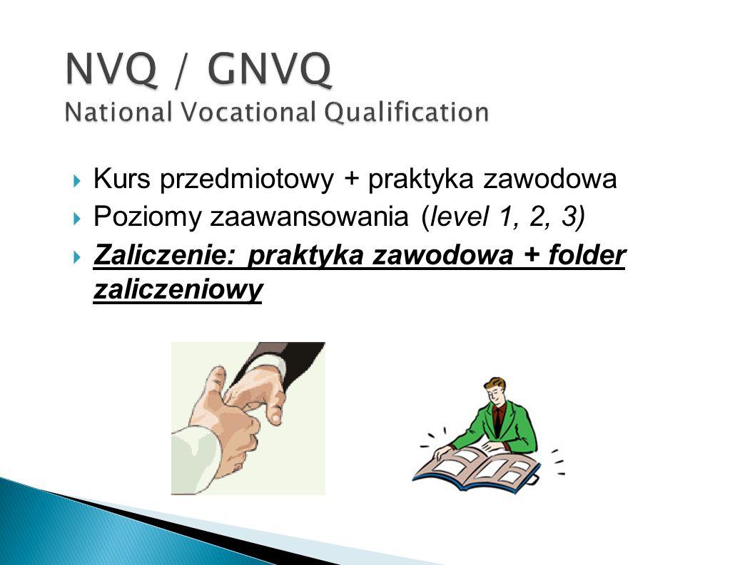 Kurs przedmiotowy + praktyka zawodowa Poziomy zaawansowania (level 1, 2, 3) Zaliczenie: praktyka zawodowa + folder zaliczeniowy