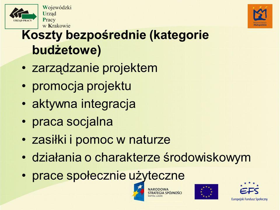 Koszty bezpośrednie (kategorie budżetowe) zarządzanie projektem promocja projektu aktywna integracja praca socjalna zasiłki i pomoc w naturze działani