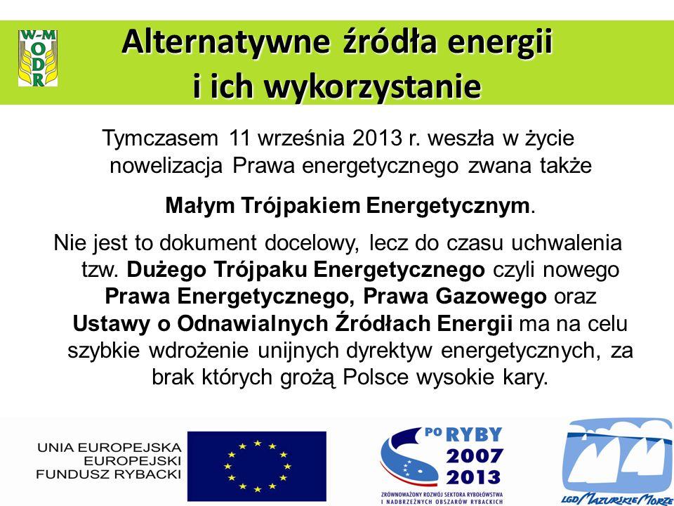 Tymczasem 11 września 2013 r. weszła w życie nowelizacja Prawa energetycznego zwana także Małym Trójpakiem Energetycznym. Nie jest to dokument docelow
