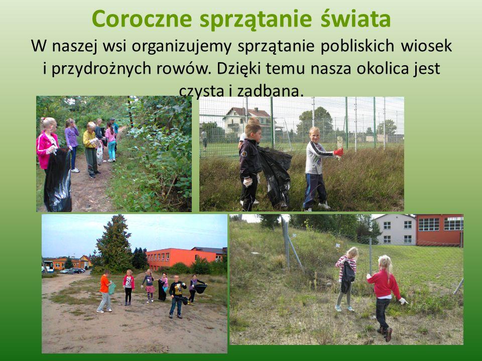 Coroczne sprzątanie świata W naszej wsi organizujemy sprzątanie pobliskich wiosek i przydrożnych rowów. Dzięki temu nasza okolica jest czysta i zadban