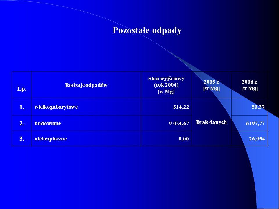Pozostałe odpady Lp. Rodzaje odpadów Stan wyjściowy (rok 2004) [w Mg] 2005 r. [w Mg] 2006 r. [w Mg] 1. wielkogabarytowe314,22 Brak danych 50,27 2. bud