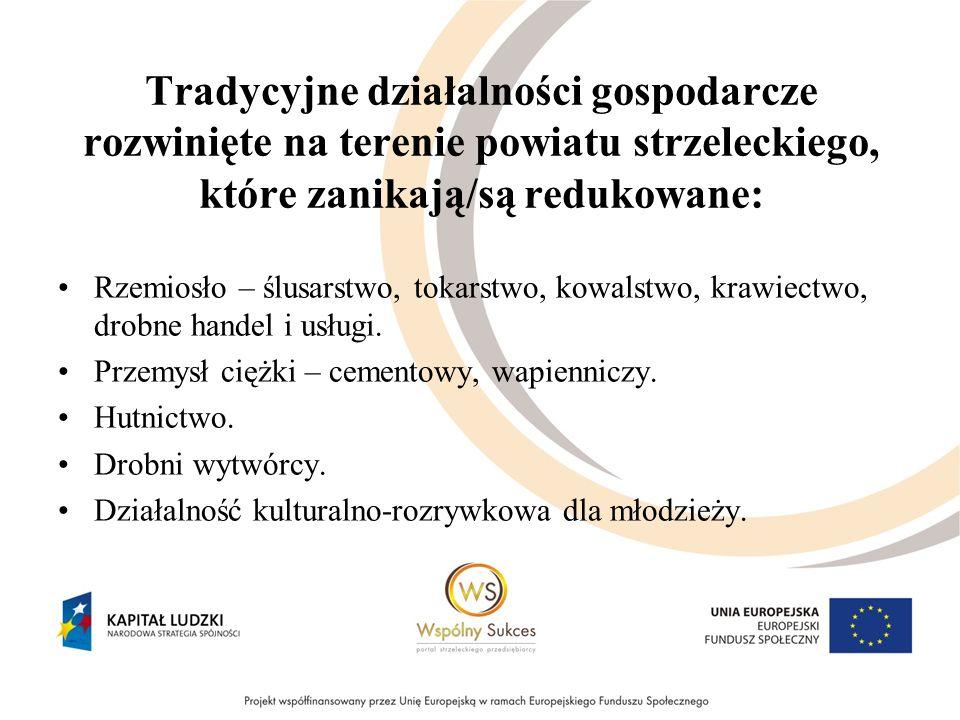 Tradycyjne działalności gospodarcze rozwinięte na terenie powiatu strzeleckiego, które zanikają/są redukowane: Rzemiosło – ślusarstwo, tokarstwo, kowa