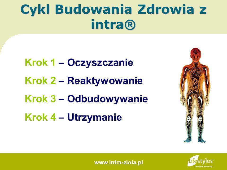 Krok 1 – Oczyszczanie Krok 2 – Reaktywowanie Krok 3 – Odbudowywanie Krok 4 – Utrzymanie Cykl Budowania Zdrowia z intra® www.intra-ziola.pl